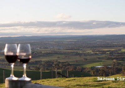 Barossa wine glass view